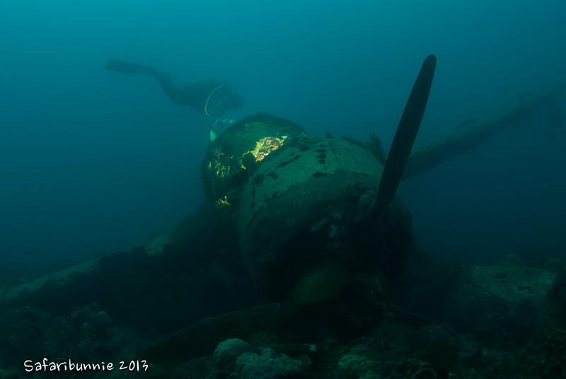 Jake's Seaplane - Palau by Tracey Jennings