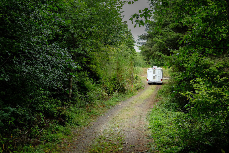Looking down our driveway in Waldport....this is where we camp and sleep since it is relatively flat down there.