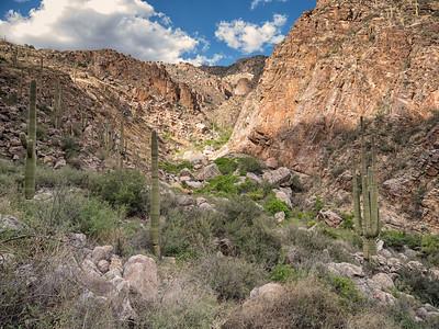 Hiking in Tucson, AZ