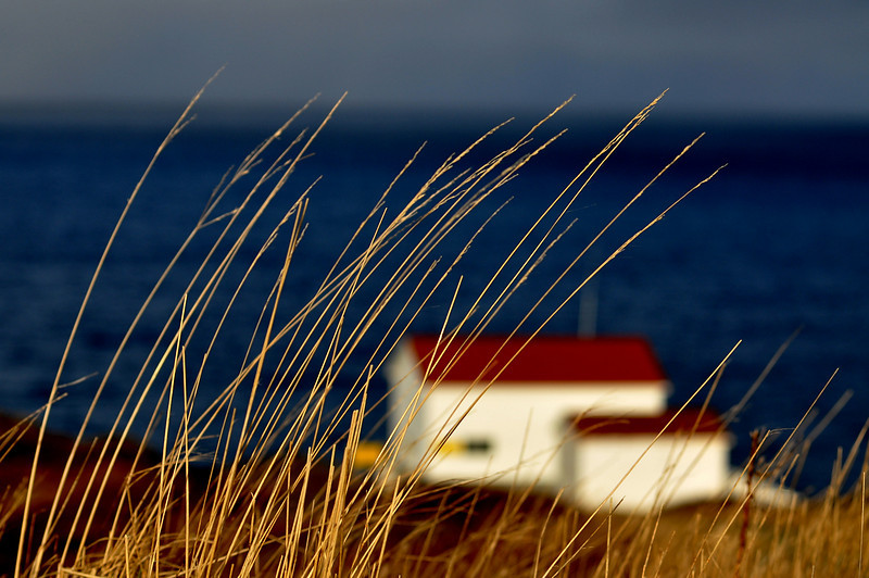 Cape Spear.