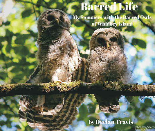 Barred Life: My Summers with the Barred Owls of Whidbey Island photo book cover