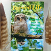barred-life-paperback-book-declan-travis-with-owl-feathers