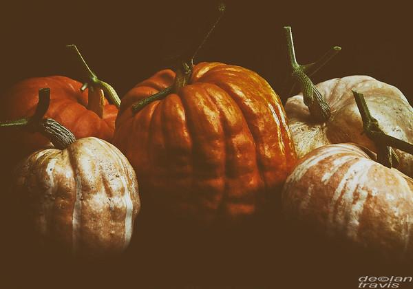 the-great-pumpkin-show-dark