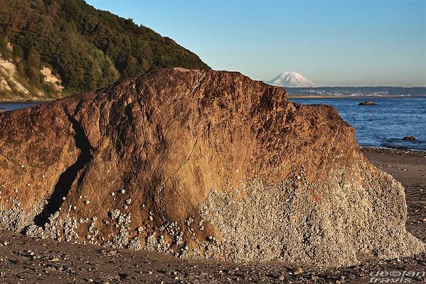 Scatchet Head Beach Formation