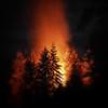fire-in-the-cedars