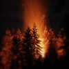 fire-in-the-cedars-2