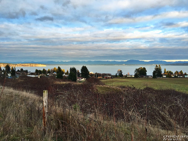 Whidbey Island, Late Afternoon
