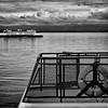 ferry-boats-crossing-washington-bw