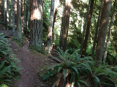 Whidbey  Summer Training 2014