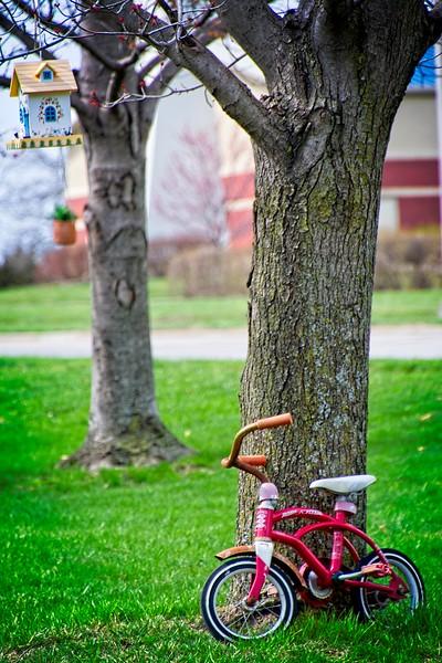 SRf2103_3888_Bike