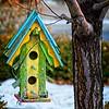 SRf1912_1704_BirdHouse
