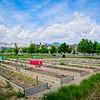 SRf2005_2222_GardenPlots