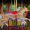The Carousel at the Kansas City Zoo, Kansas City, MO