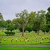 SRf2008_2961_Cemetery