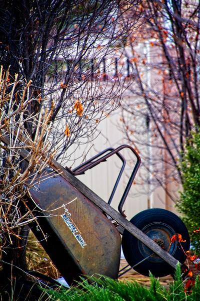 A wheelbarrow just waitin' around
