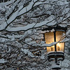 A lamp in front of the Grand America Hotel after a snowstorm