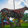 SRf2107_6549_Horse