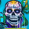 SRd1806_5509_Skull