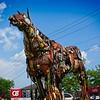 SRf2107_6548_Horse