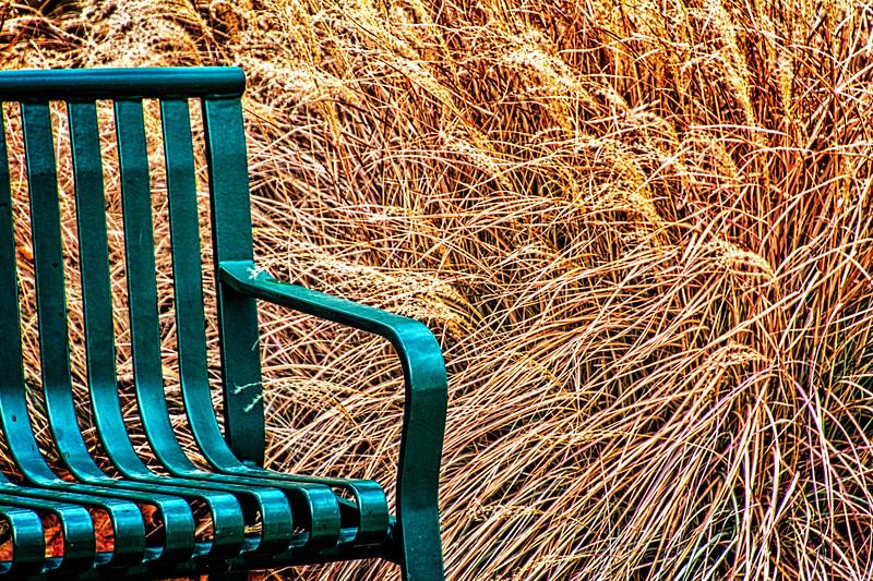 A green bench at the Kansas City Zoo while visiting Kyson and Cory.