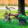 SRf2108_6793_Tricycle