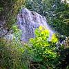 SRf2107_6347_Waterfall