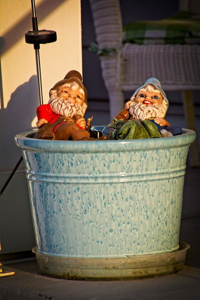 May you be as happy as garden gnomes in a pot