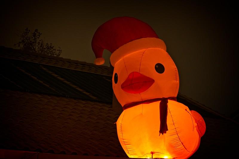 Rooftop Christmas Duck
