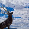 An Elk Statue in Fillmore, UT