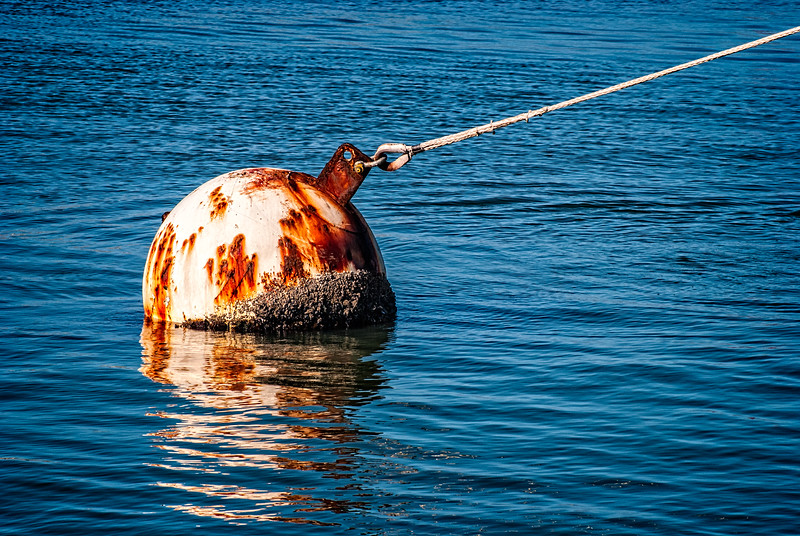 Just a buoy that Aaron Barlow and I saw while we walked the streets of San Francisco