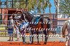 Whim Creek Rodeo-102