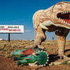 Arizona's Jurassic Real Estate