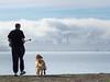Man and Dog, Albany CA