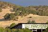 Green Graffiti, Solano County CA
