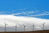 Five Windmills, Fog, and Blue Sky, Altamont Pass, Livermore CA