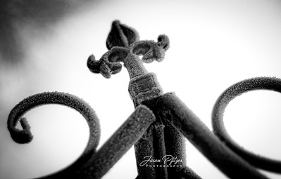 Frosty Fleur de Lis in the winter morning. Enjoy and hold hands.