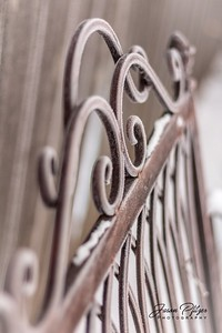 The frost covered the metal scrollwork of this bench on a brisk winter morning. Enjoy and hold hands.