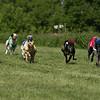 WRA Rosewood Racing 051317-7444