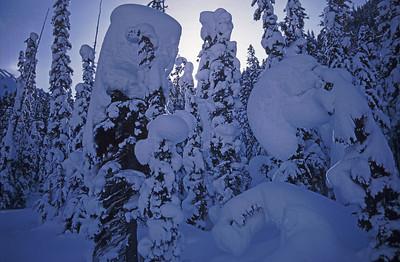Pacific Ski Air & heli skiing