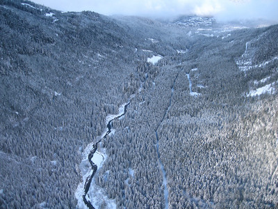 Fitzsimmons Creek from Peak2Peak gondola