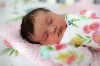 tara-whitaker-newborn-022