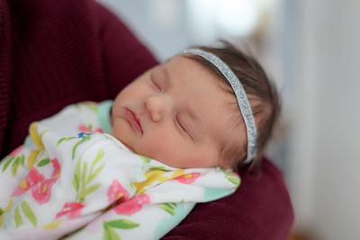 tara-whitaker-newborn-019