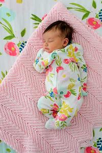 tara-whitaker-newborn-020