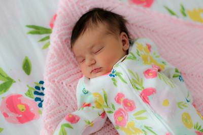 tara-whitaker-newborn-021
