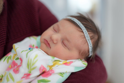 tara-whitaker-newborn-018