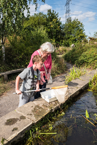 Pond dipping at RSPB Old Moor