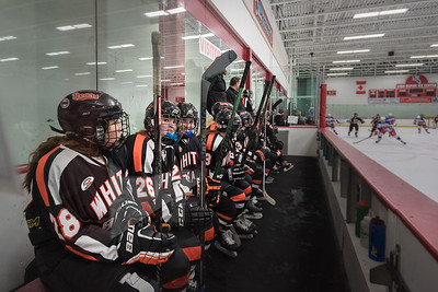 _LAS2086Hockey