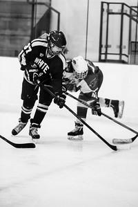 _LAS2048Hockey