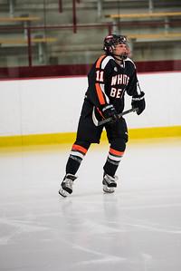 _LAS2096Hockey