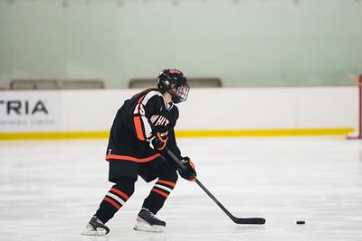 _LAS1978Hockey